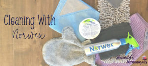 Cleaning with Norwex